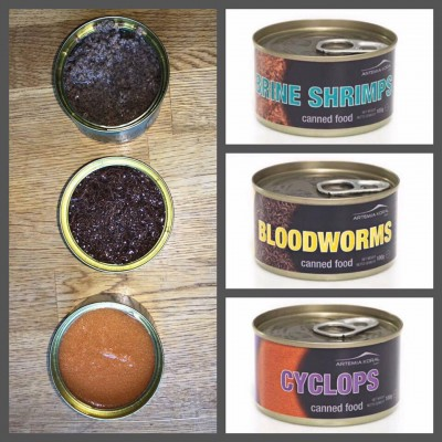 AQL Canned Food Bloodworms 100gr - Chironomus in scatola