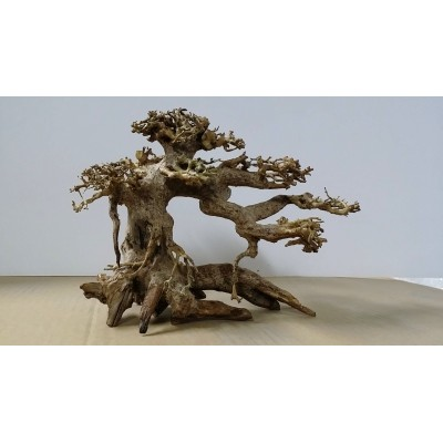 NatureLine Decor Bonsai Wood - Legno per Aquascaping