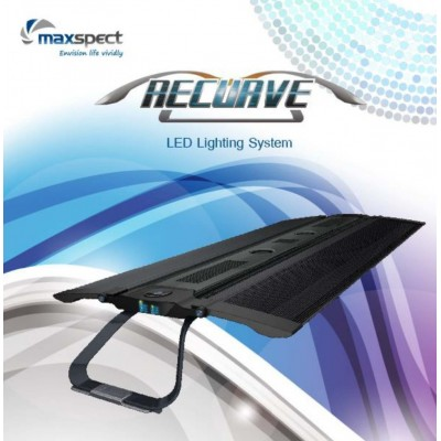 Maxspect Recurve LED R6-120