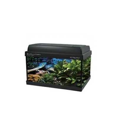 acquario Haquoss evolution eco led 51