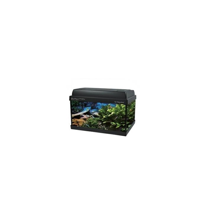 acquario Haquoss evolution eco led 38